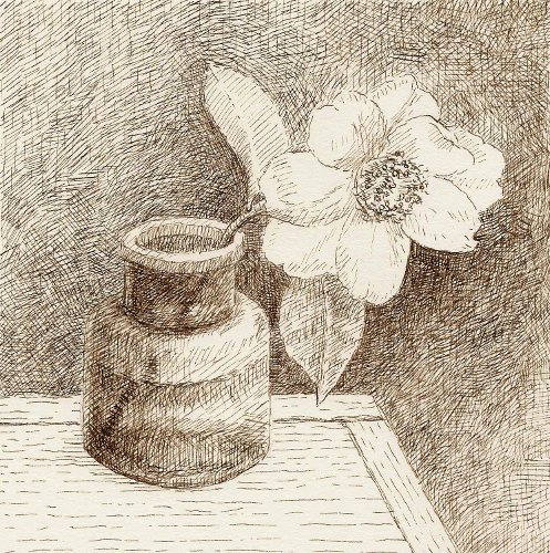[Image: Camellia in Inkwell, April 21, 2012, brown ink on paper, 5 x 5 inches]