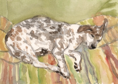[Image: The Sleep of the Just (Daisy), November 29, 2012, watercolor, 8 3/4 x 12 1/4 inches]