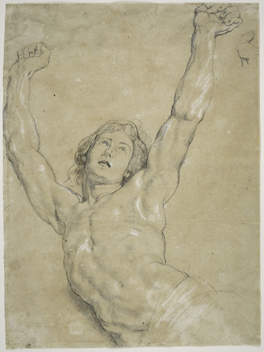 "[Image: Peter Paul Rubens, Flemish (Siegen, Westphalia 1577 - 1640 Antwerp, Belgium), A Study for Christ for ""The Elevation of the Cross,"" 1610-11, Flemish, black and white chalk and charcoal on light gray antique laid paper discolored to tan, 40.3 x 29.8 cm (15 7/8 x 11 3/4 in.), Harvard Art Museums/Fogg Museum, Gift of Meta and Paul J. Sachs]"